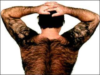 hairy_back.jpg