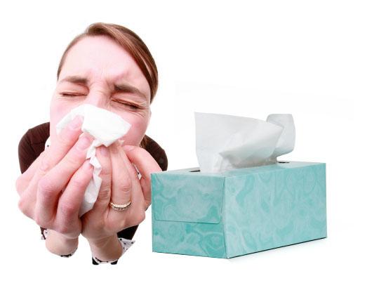 Cold Nose Skin