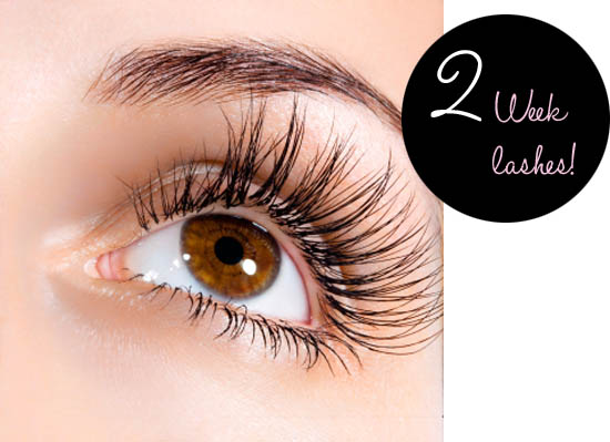 0067bae7fa7 Tried & Tested: 2 Week Lashes Review | Beaut.ie