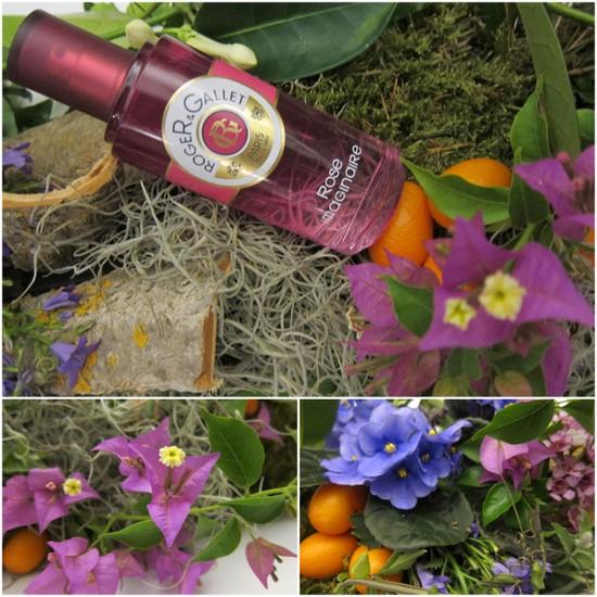 Roger & Gallet Rose Imaginaire perfume