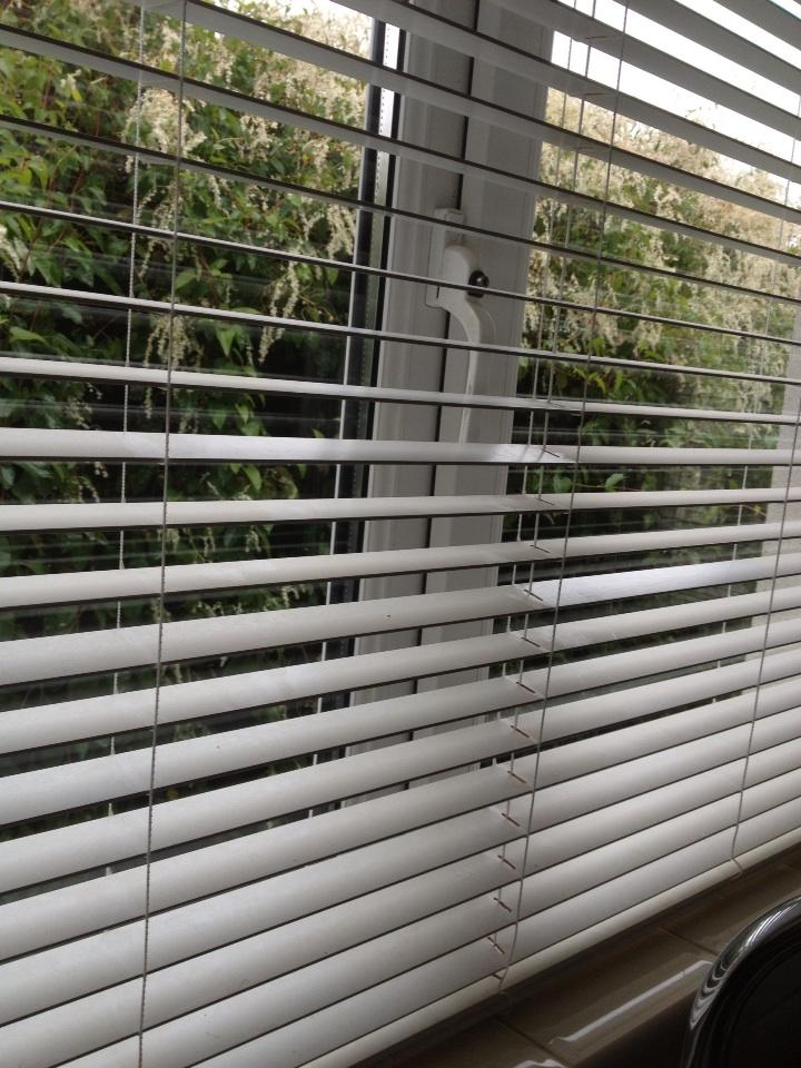 what are venetian blinds so dog is the best and an alarm obviously good especially monitored one but venetian blind well im firmly convinced that they go some way to foil burglars with blinds what are your top tips beautie