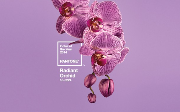 pantone colour of year