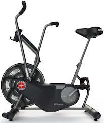 Airdyne Bike: Also my arch nemesis