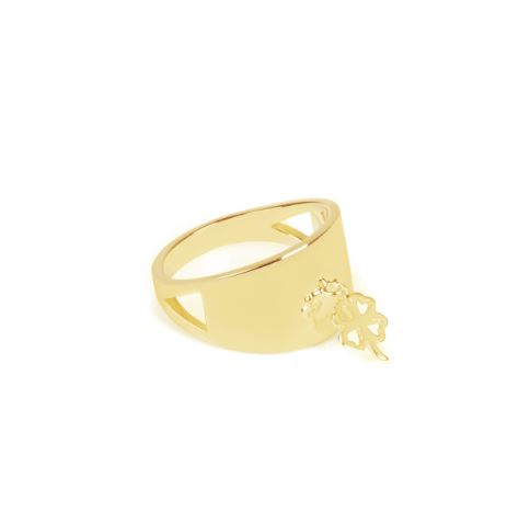 Believe to Achieve Ring €85
